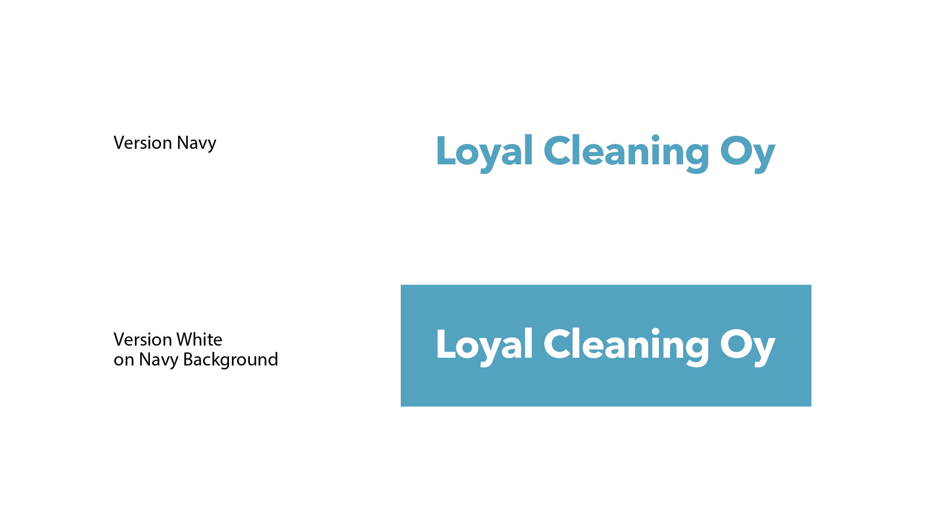 Loyal_Cleaning_Oy_Brand-07
